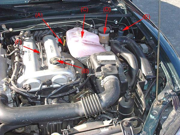 1. Le compartiment moteur d'un côté...